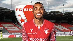 Guillaume Hoarau buts FC Sion